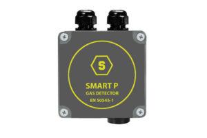 SMART-P-1